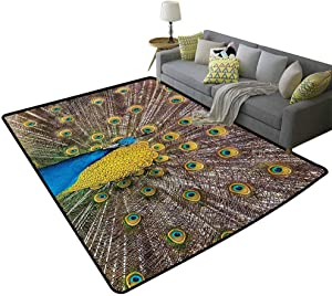 Peacock Decor Collection Runner Area Rugs Peacock Displaying Feathers Golden Vibrant Colors Eye Shaped Picture Print Easy to Clean Carpet Mustard Turquoise Peru, 3'x 5'(90x150cm)