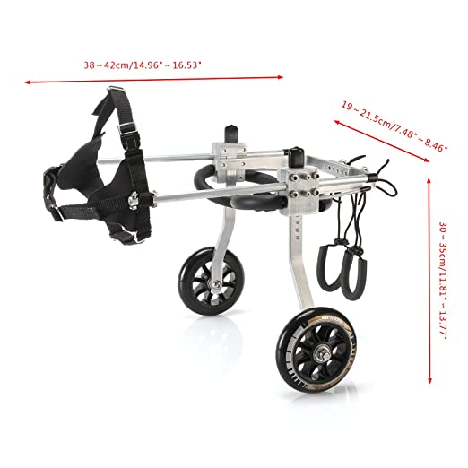 Amazon.com : Anmas Sport Adjustable Dog Pet Wheelchair, Hind Legs Rehabilitation (M-Hip Height: 12