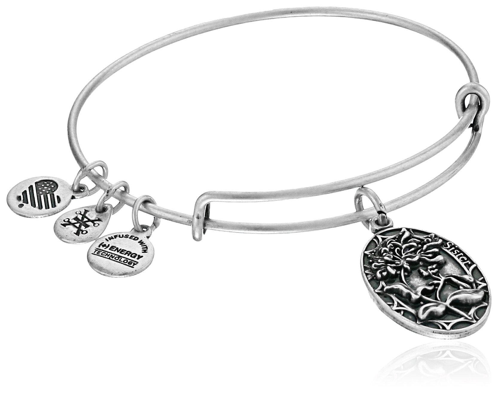 Alex and Ani Because I love you, Sister II Expandable Rafaelian Silver-Tone Bangle Bracelet