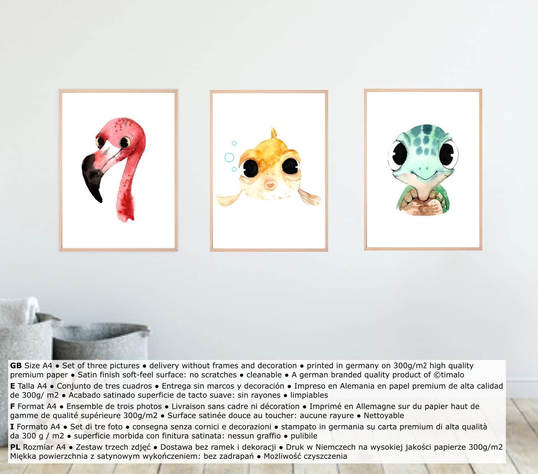 t3er01-t000-A4 Dekoration M/ädchen Junge Tiere Flamingo Fisch Schildkr/öte Timalo/® 3er Set Bilder Poster Deko Kinderzimmer Babyzimmer