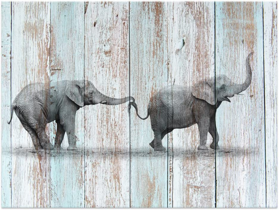 """Visual Art Decor Animals Canvas Prints Elephant Wall Decor Dual View Picture on Wood Background Wall Art Decor (16""""x20"""", Elephant)"""