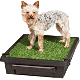 PetSafe Pet Loo Portable Indoor/Outdoor Dog Potty, Alternative to Puppy Pads, 3 Size Options for Small to Large Breeds