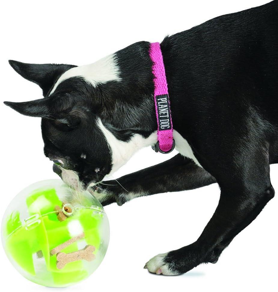 planet dog orbee tuff mazee ball