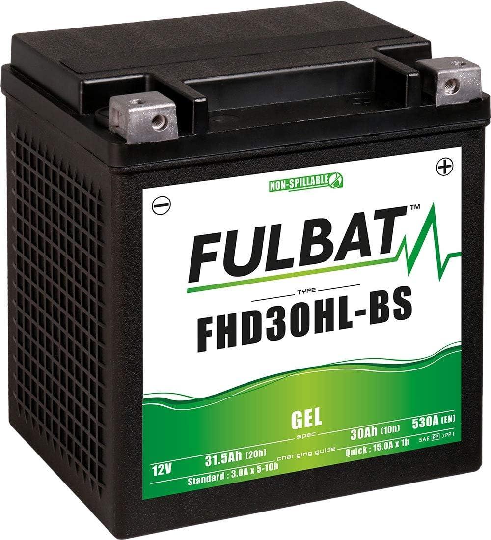 Fulbat Motorrad Batterie Gel Fhd30hl Bs Etx30l 12v 30ah Auto