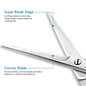 Professional Barber Hair Cutting Scissors/Shears (6 Inch) for Hairdressing & Styling Ice Tempered Stainless Steel Finish by Candure (Single Scissor)