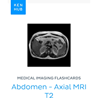 Medical Imaging flashcards: Abdomen - Axial MRI T2: Learn all muscles, bones, arteries, veins, organs and mri on the go…