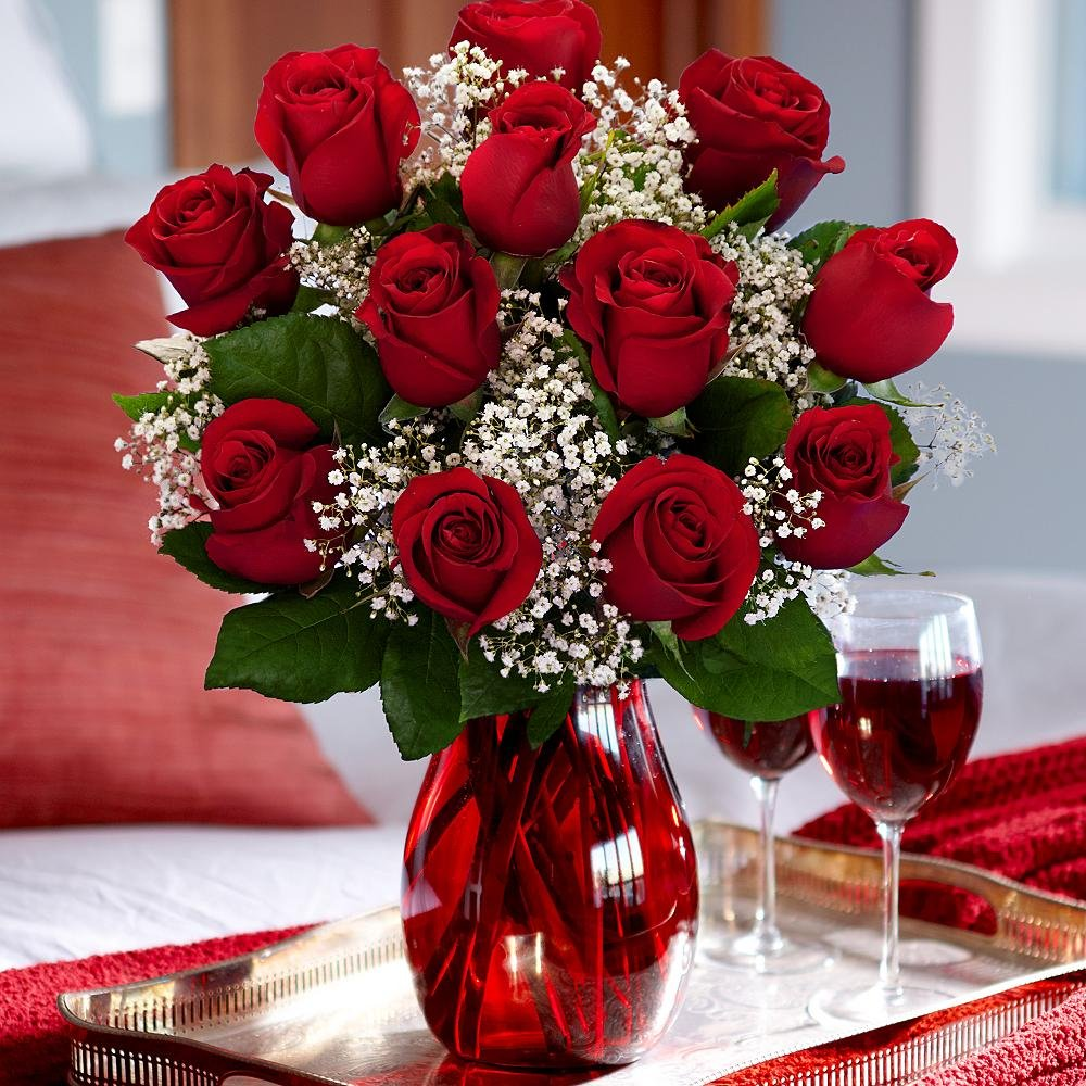 Amazon One Dozen Red Roses Fresh Cut Format Rose Flowers