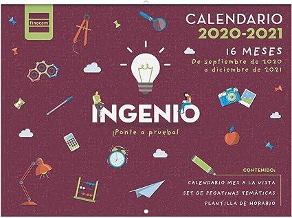 Comprar Finocam - Calendario de Pared 16 Meses 2020-2021 308x225 Mes Vista Ingenio Español
