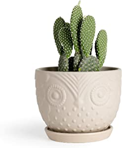 Medium Plant Pot - 6.1 Inch Khaki Owl Ceramic Planter with Attached Saucer for Ivy, Snake Plant or Succulents