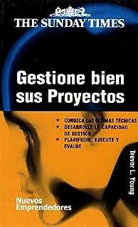 Gestione bien sus proyectos/ Successful project management (Nuevos Emprendedores) (Spanish Edition)
