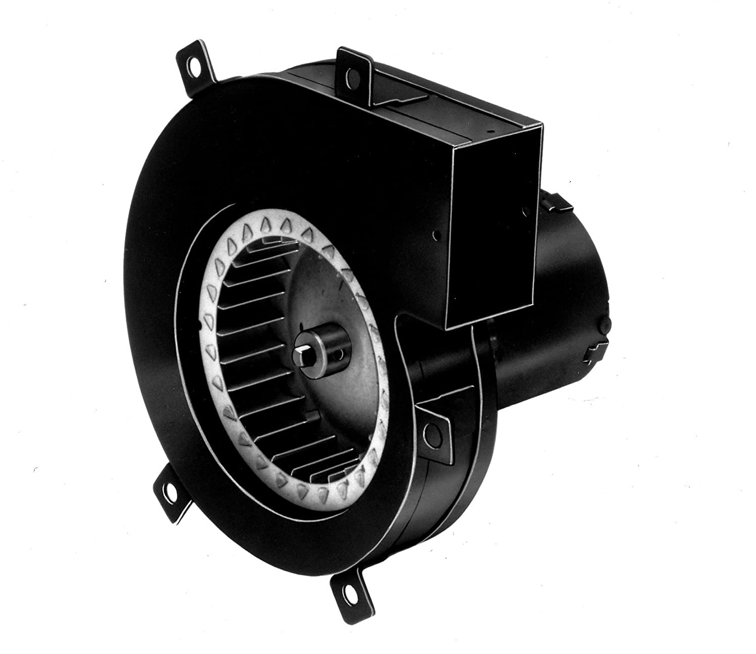 Amazon fasco a064 33 frame shaded pole oem replacement amazon fasco a064 33 frame shaded pole oem replacement specific purpose blower with sleeve bearing 155hp 3150 rpm 115v 60 hz publicscrutiny Images