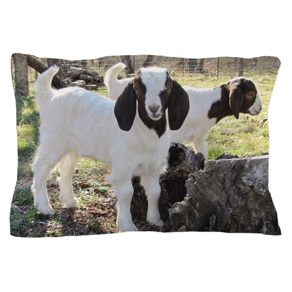 CafePress - Twin Kids In The Woods - Standard Size Pillow Case, 20''x30'' Pillow Cover, Unique Pillow Slip