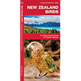 New Zealand Birds: A Folding Pocket Guide to Familiar Species (Wildlife and Nature Identification)