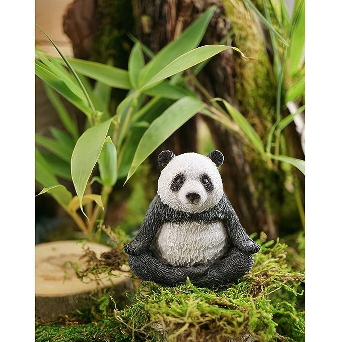 Amazon.com : Top Collection Miniature Fairy Garden and Terrarium ...