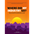 Where did my industry go?: Why once successful Estate and Letting Agencies are struggling and how a new dawn can turn them back into great businesses.