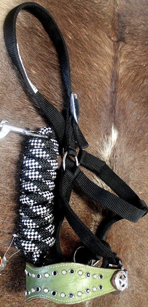 Horse Noseband Tack BroncレザーホルターTiedownリードロープ280351