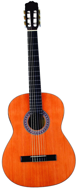 INDIANA IC-25 クラシックギターNatural アコースティックギター アコギ ギター (並行輸入) B007P093I8