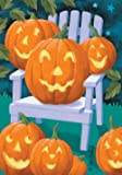 Toland Home Garden Jacks a Plenty 28 x 40 Inch Decorative Fall Autumn Adirondack Pumpkin House Flag