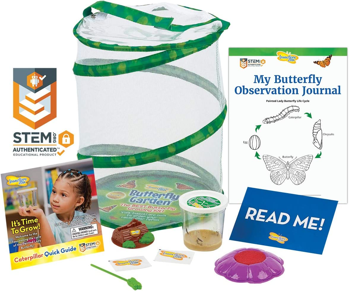 Insect Lore Butterfly Garden: Original Habitat and Live Cup of Caterpillars with STEM Butterfly Journal – Life Science & STEM Education – Butterfly Kit