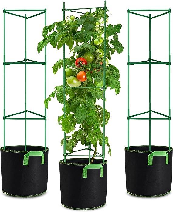 Top 10 Garden Grow Tomato