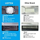 LOFTEK RGB COB LED Flood Lights, Outdoor Color
