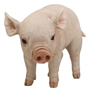 """Ebros Large Adorable Realistic Animal Farm Babe Pig Statue 15"""" Long Rustic Country Piggy Piglet Pet Pigs Collectible Figurine"""