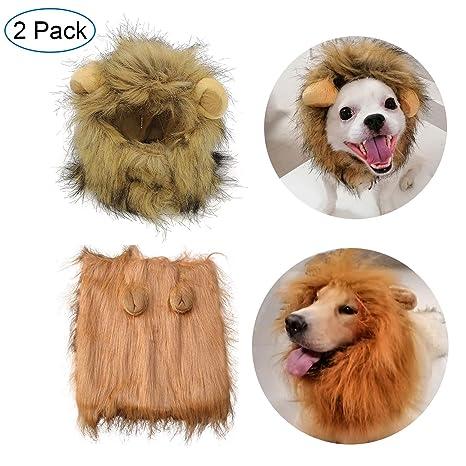 Amazon.com: Disfraz de melena de león extraño para gato y ...