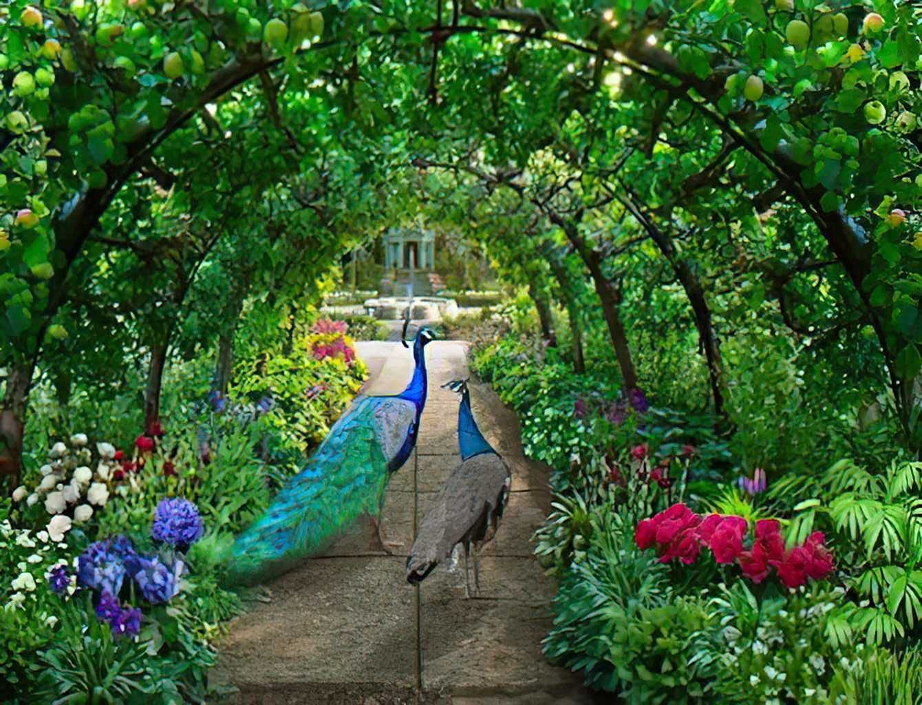 Jigsaw Puzzle 300 Pieces Puzzles for Adults Kids Mural A Couple of Peacocks Walks Through Green Garden Full Irises and Hydrangeas Wooden Large Piece Games Friend Adult Ages 8-10 15x20 Inch