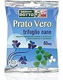 Sdd 40030440 Prato Trifoglio Nano, Verde