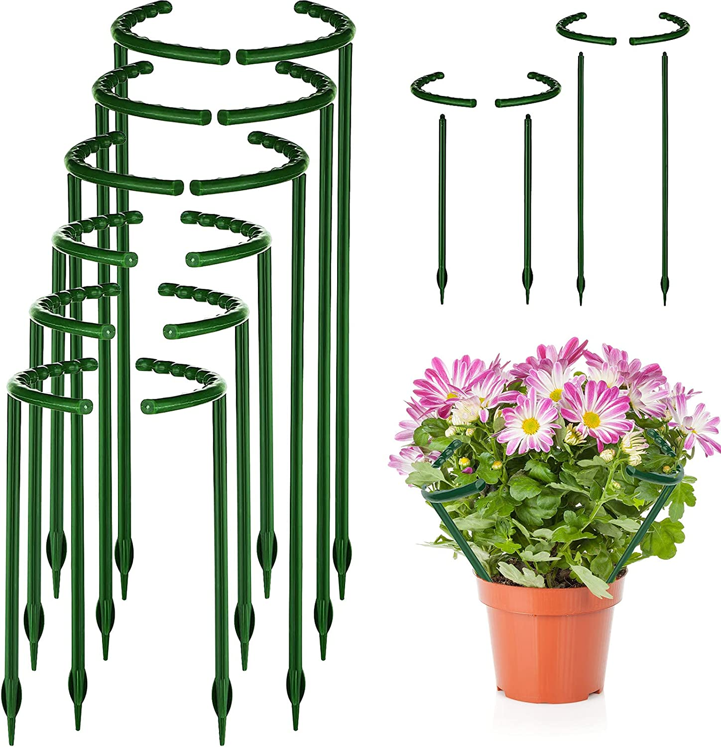 Broadsheet 12 Pack Plant Support Stakes, Half Round Plant Support Ring Garden Flower Plant Cage Holder, Outdoor Plant Support Stake for Peony, Rose Vegetable, Hydrangea, Vine