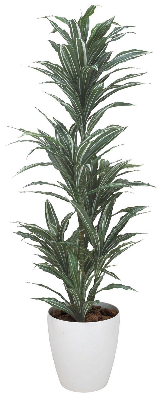 造花アート観葉植物 ワーネッキー1.8< 誕生日祝い 結婚祝い 結婚記念日 出産祝いに > B01MFBXZH3