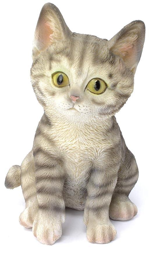 Piquaboo - Adorno de Resina para Amantes de los Gatos, Color Gris ...