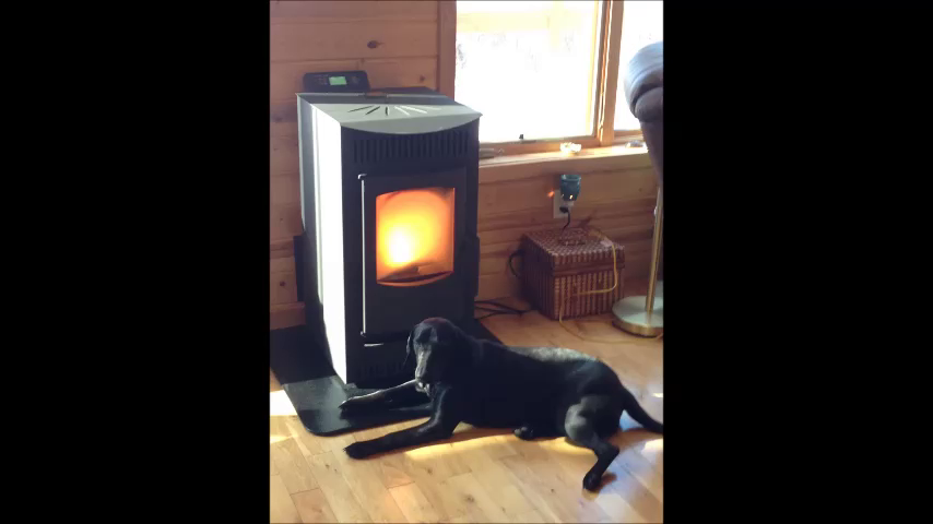 I bought the Serenity pellet stove after getting fed up with skyrocketing  propane gas prices in what has been a record miserably cold and long winter. - Amazon.com: Customer Reviews: Castle 12327 Serenity Wood Pellet