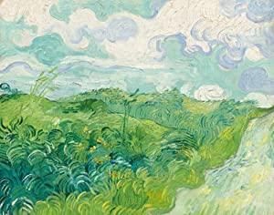 Green Wheat Fields, Auvers (Artist: Vincent van Gogh) c. 1890, Masterpiece Classic (9x12 Art Print, Wall Decor Travel Poster)