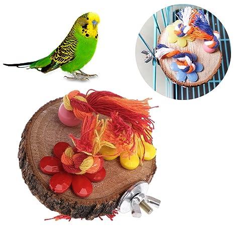 Autone Parrot Perch, soporte de madera para colgar jaula, hámster ...