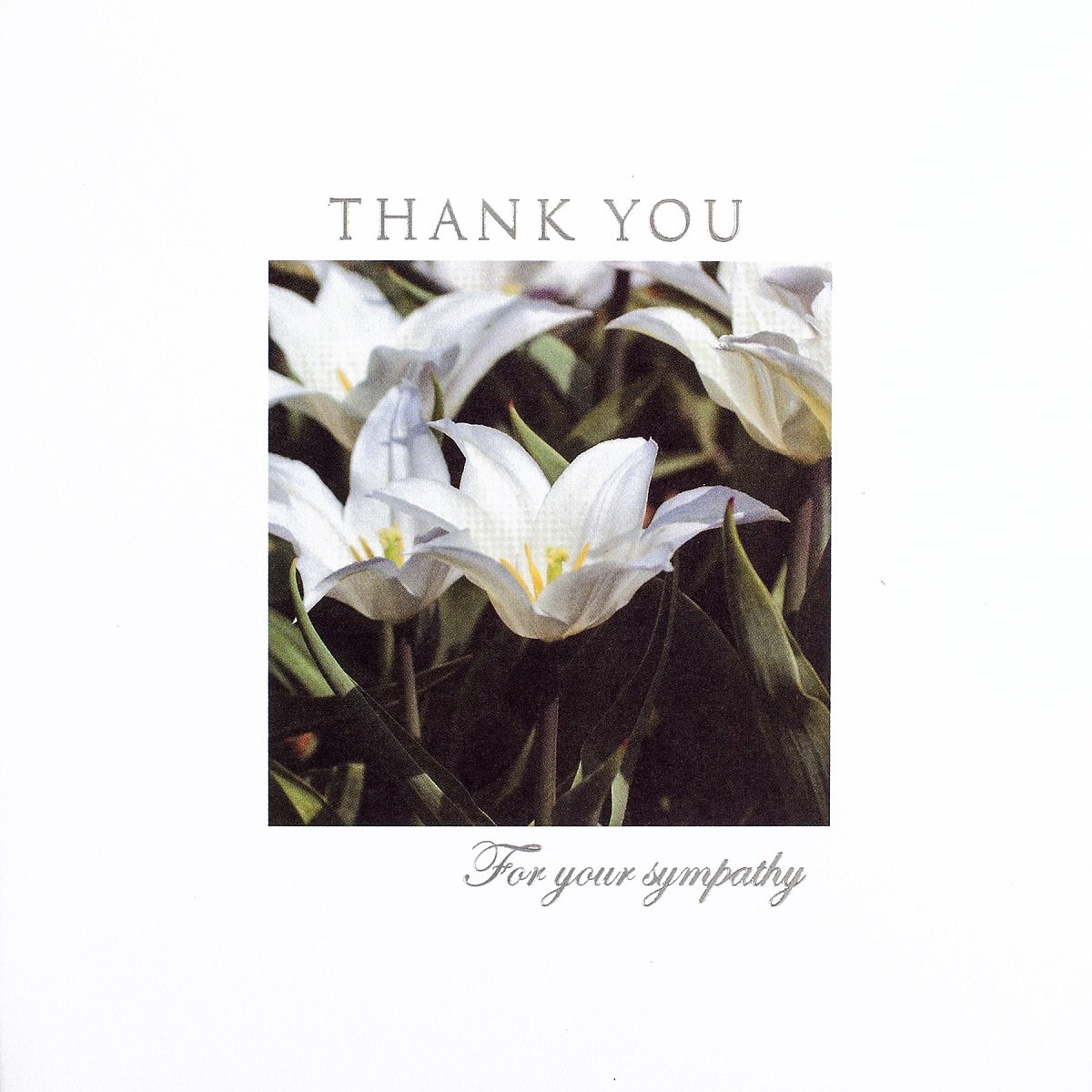 36 Multi Pack Thank You For Your Sympathy Cards /& Envelopes