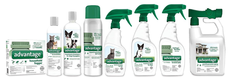 Advantage Carpet Upholstery Spot Spray, 16-oz spray advise