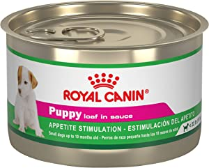 Royal Canin Canine Health Nutrition Puppy Loaf in Sauce Canned Dog Food, 5.2 oz Can (Pack of 24)