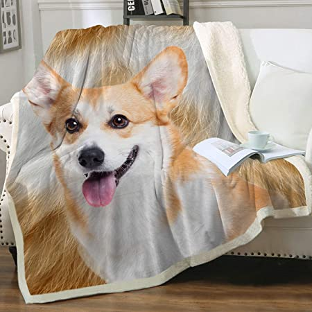 """Give Thanks Luxe Plush Throw Blanket 50x60""""  Corgi Puppy Thanksgiving NWT"""