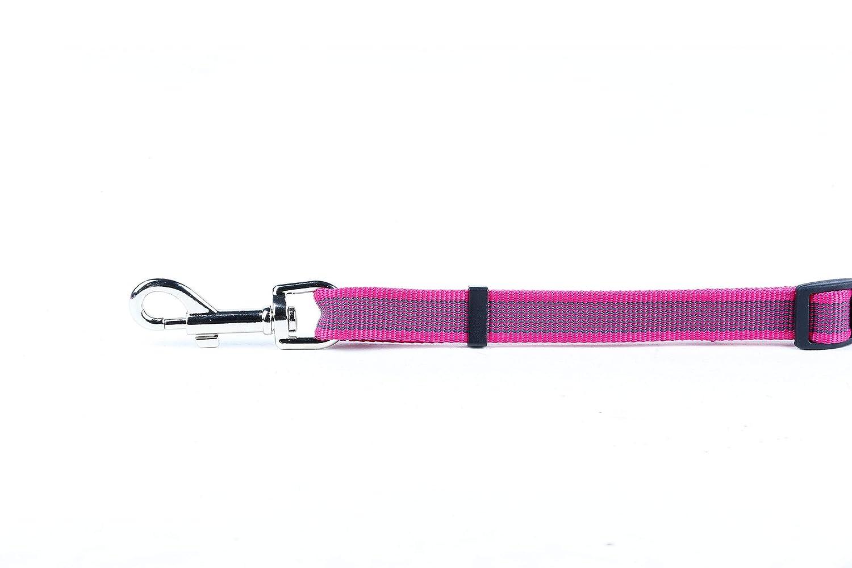 1 Julius-K9 16SGA-B-1 Conexi/ón del Cintur/ón de Seguridad Azul y Gris