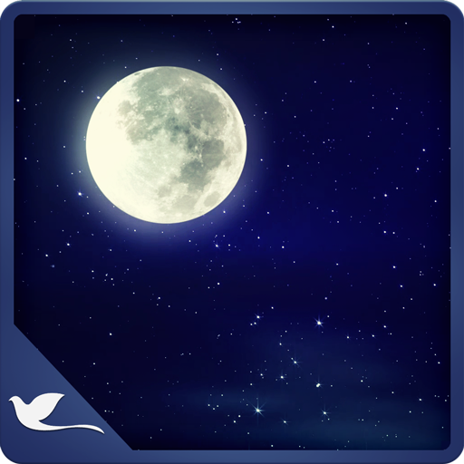 Moonlight Ambience - Calm Yourself with the Meditating Moonlight !
