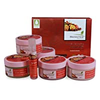 Bionechral Multi Fruitamin Spa Facial Kit without Mineral Oil, Parabens, Sulphates for Instant Glow, 280g