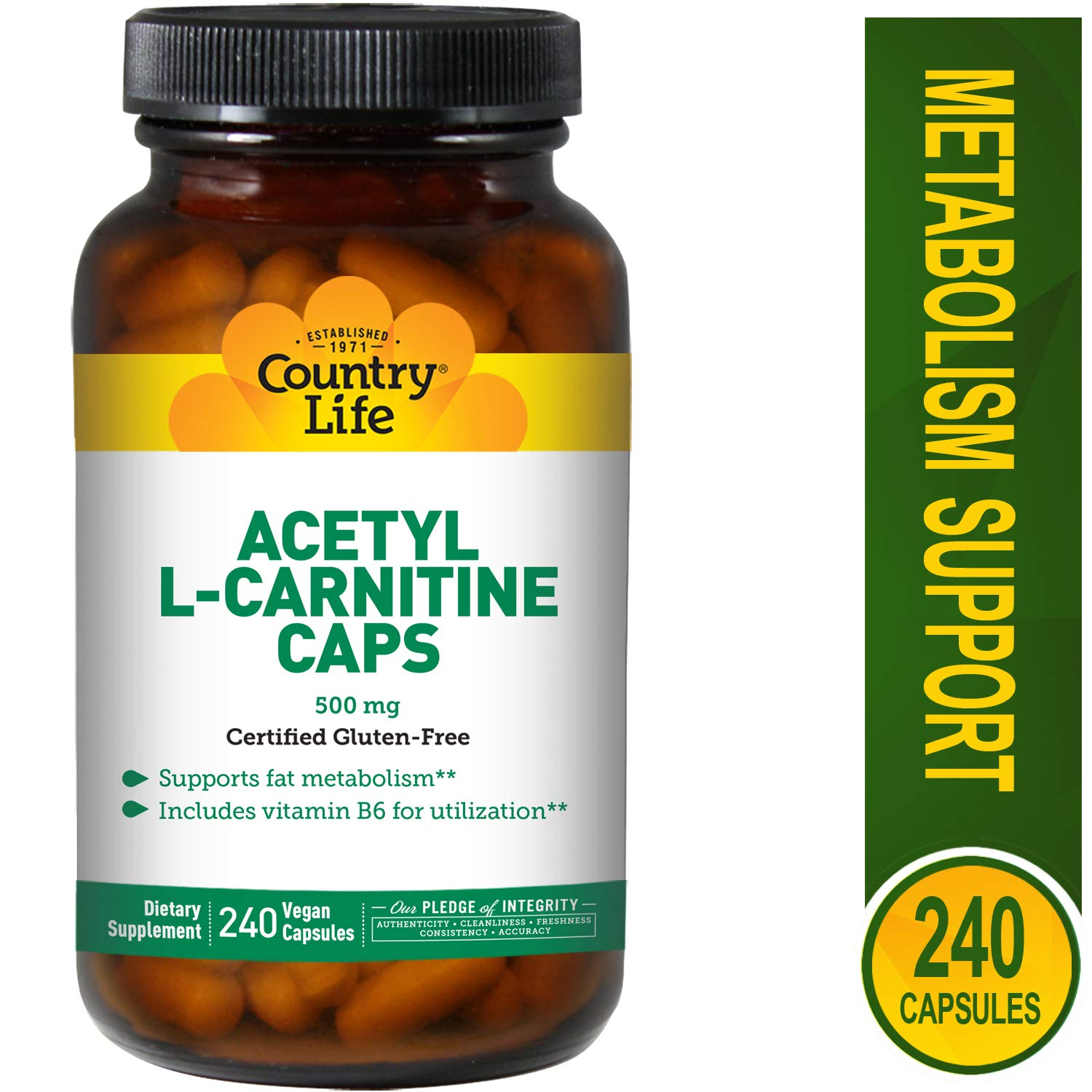 Country Life Acetyl L-Carnitine, 500 mg with B-6 - 240 Vegan Capsules