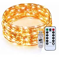 TaoTronics Indoor LED String Lights Copper Wire Lights 33ft 100 LED USB with Remote Controller Seasonal Decor Rope Lights for Party Christmas Decorations(Warm White)