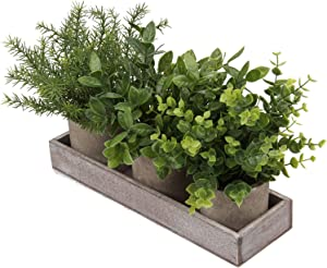 3 Pack Mini Potted Fake Plants Artificial Plants in Pot Assorted Faux Eucalyptus Plants Fake Greenery in Pots Small Fake Plants for Room Shelf Decor Farmhouse Kitchen Table Centerpieces (Style #04)