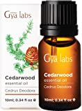 Gya Labs Cedarwood Essential Oil - Promotes Better Focus, Boost Hair Growth & Healthy Skin (10ml) - 100% Pure…