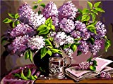 Shukqueen Diy Oil Painting, Adult's Paint by Number