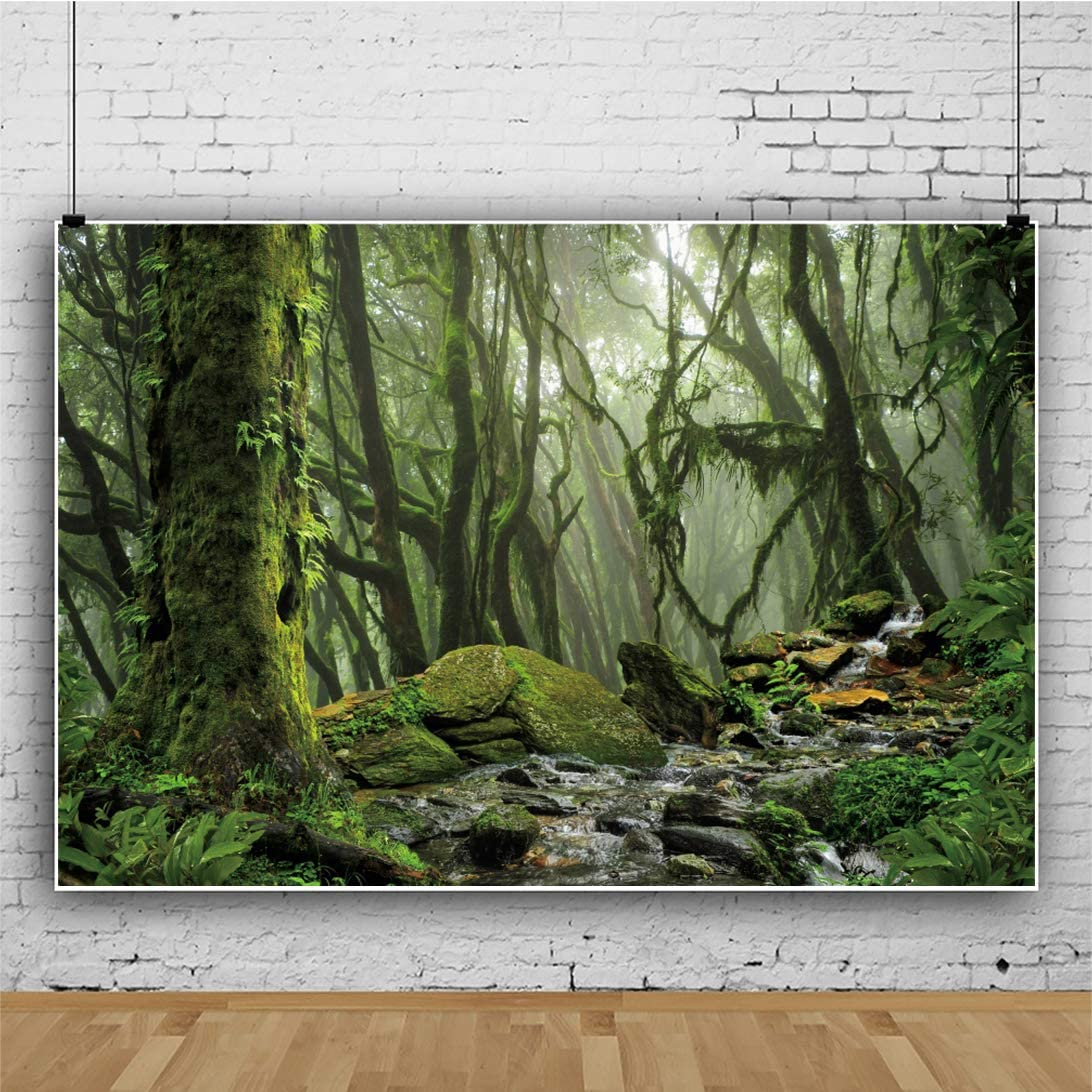 OERJU 10x8ft Virgin Forest Backdrop Mossy Trees Streamlet Photography Background for Photoshoot Kids Boys Girls Adults Artistic Adventure Portrait Photo Studio Props Video Making Vinyl Wallpaper