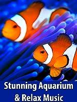 Stunning Aquarium & The Best Relax Music - Relaxing Screensaver