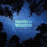 Echoes Of Wonder